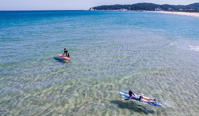 Hasil gambar untuk surffy beach